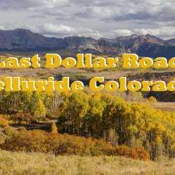 Last Dollar Road