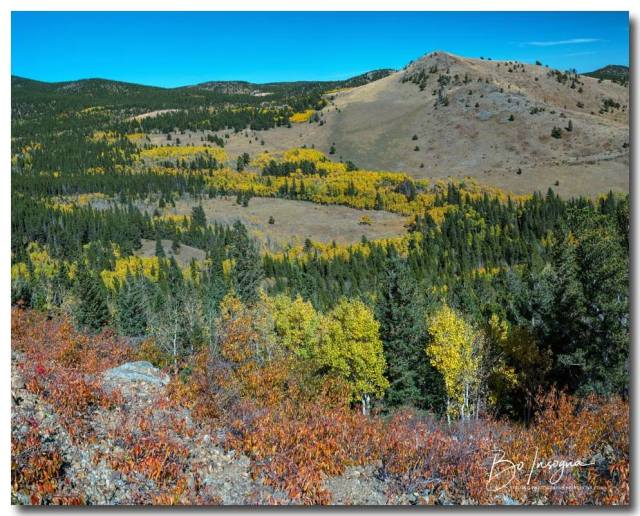 Autumn Hills Of Boulder County Colorado Art Print