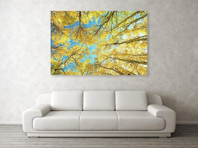 Colorado Kaleidoscope Metal Print