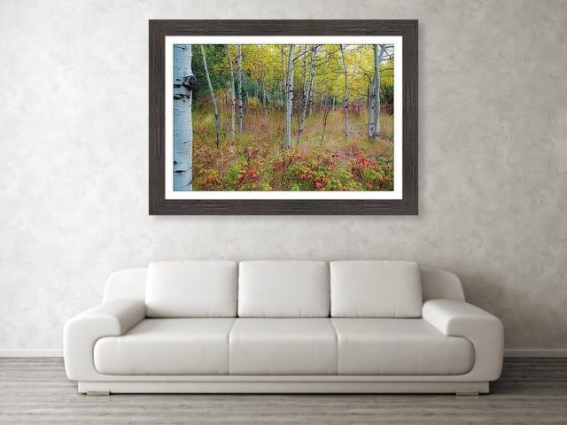 Fall Foliage Forest Delight Landscape Art Print