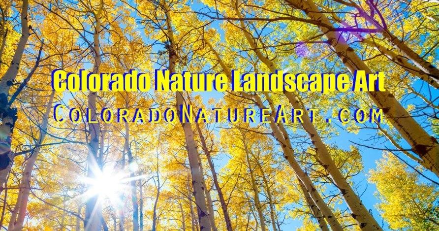 Colorado Nature Art