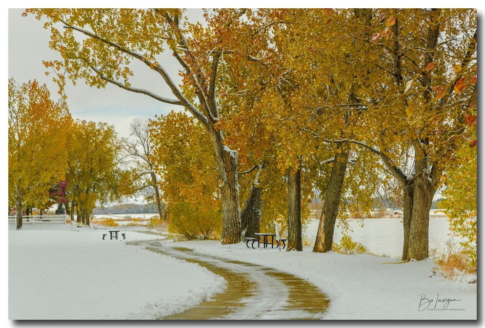 Beautiful Snowy Autumn Day