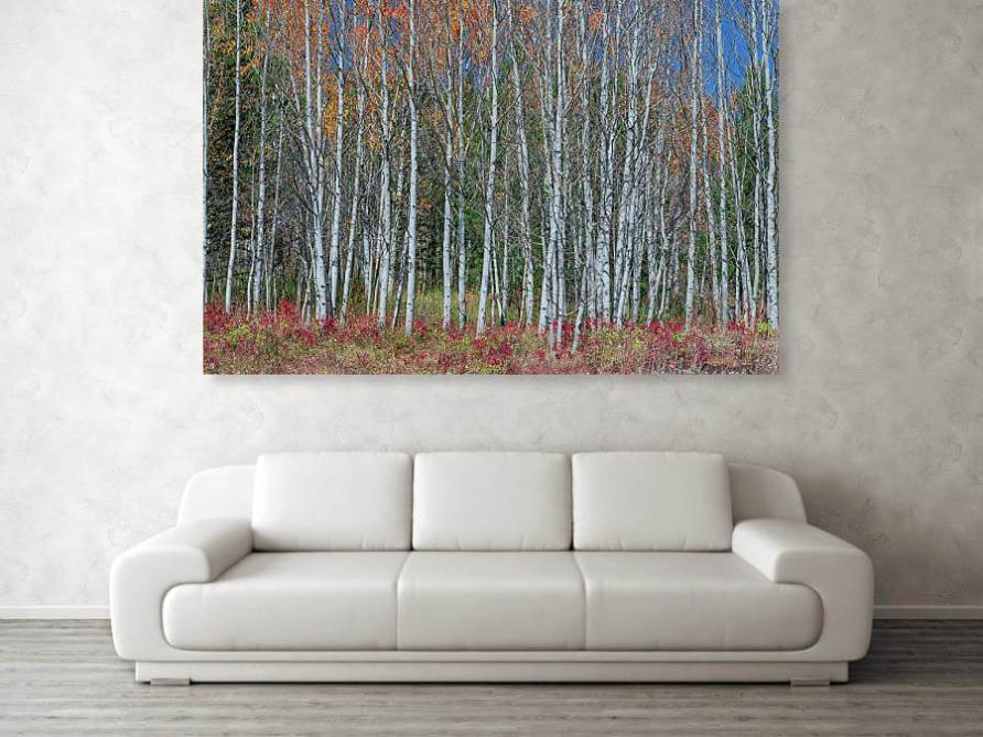 Red Orange Blue Stick Forest Acrylic Print