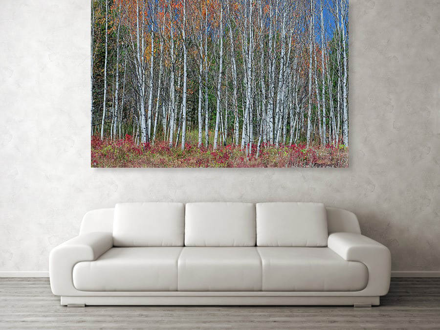 Red Orange Blue Stick Forest Print