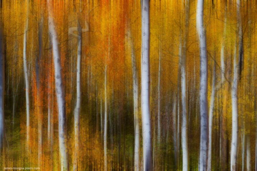 abstract photography fine art prints