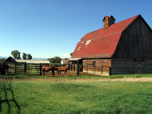 Ochs Ranch