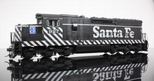 SD24zebra1