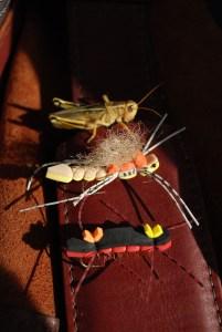 Foam Hopper and Chernobyl Ant