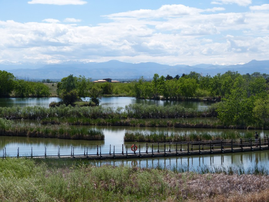 Lake Mary is the smaller of the refuge's two lakes. © Wayne D. Lewis