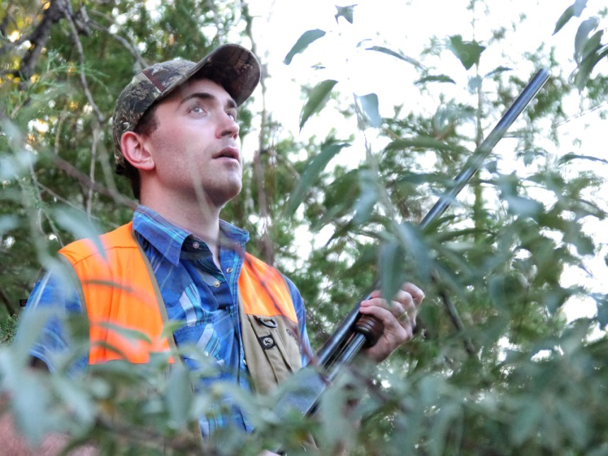 Kevin Lansing takes cover behind trees while dove hunting at Banner Lakes SWA. Photo by Jerry Neal (CPW)