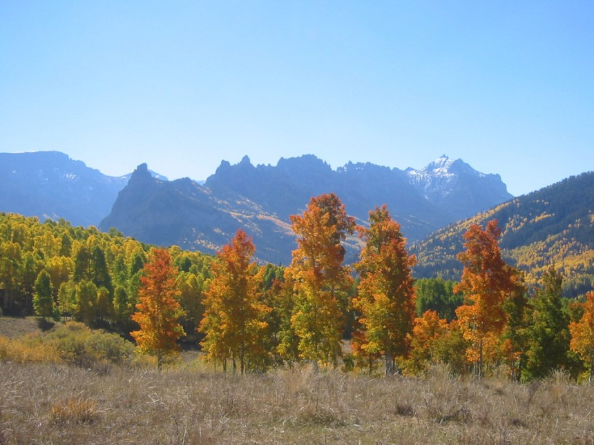 Fall in Ouray County