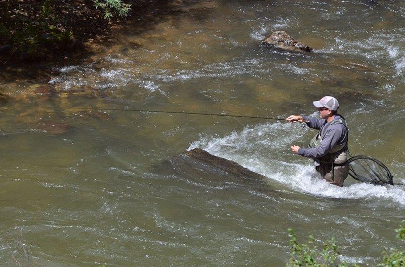 Blog-Fly-Fishing-Clear-Creek-8-8-2014-Wayne-D.-Lewis-DSC_0350