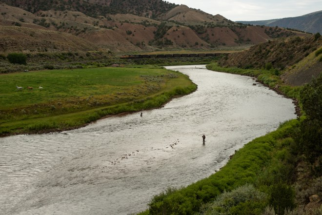 Competitors practice on the Coyote River Ranch stretch of the Colorado River near Dotsero. Photo by Mike DelliVeneri/CPW.