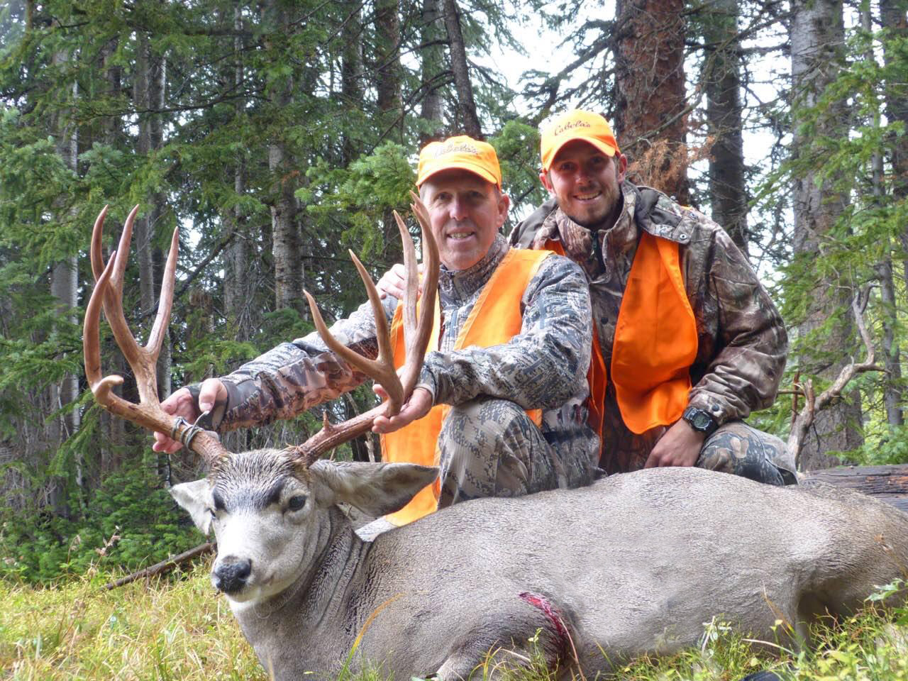 Colorado Hunter Testimonials (Monster Muley and Bowhunter's Bull) - Colorado Outdoors Online