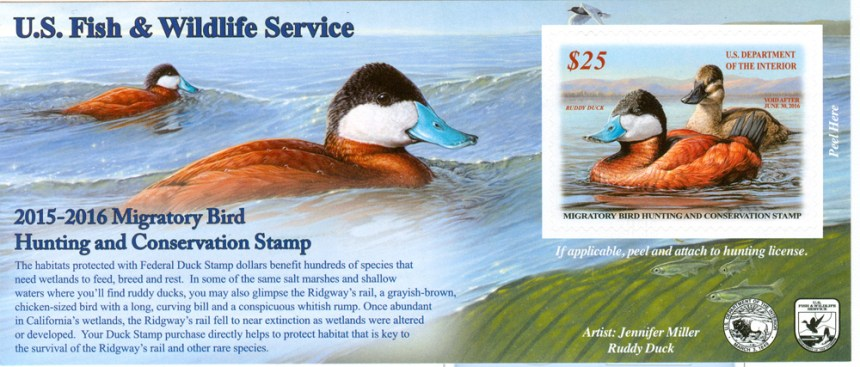 7Hunt-Ducks-Me-Fed Duck Stamp-2015