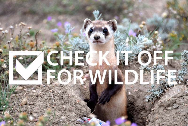 check-it-off-for-wildlife