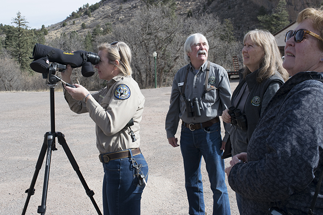 Volunteer Raptor Monitoring near Garden of the Gods