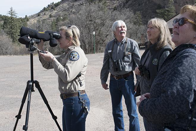 Volunteer Raptor Monitoring near Garden of the Gods