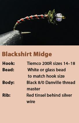 Blackshirt Midge