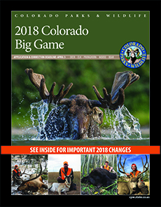 Big Game Brochure