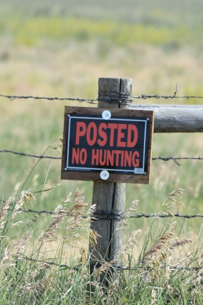 no-hunting-sign-Wayne-D-Lewis-DSC_0874