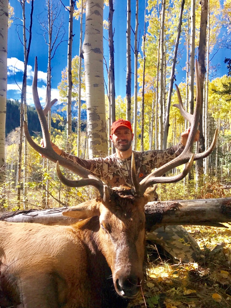 Ryan's bull elk