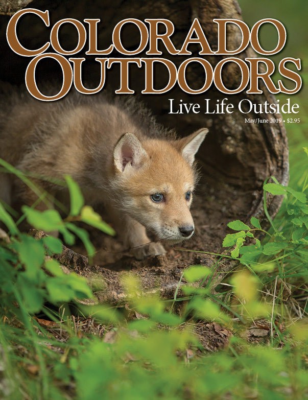 Colorado Outdoors cover