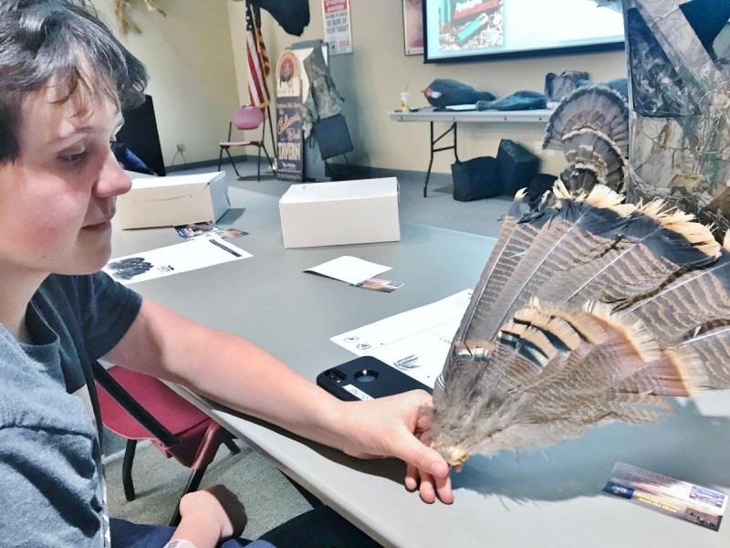 Natalie examines turkey feathers