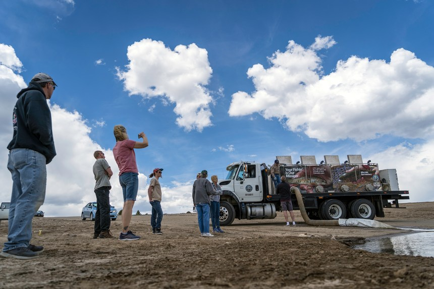 Wrapped hatchery truck draws a crowd