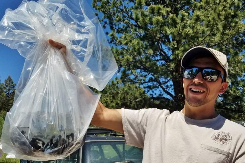 Daniel Garcia holds up a bag of tadpoles.