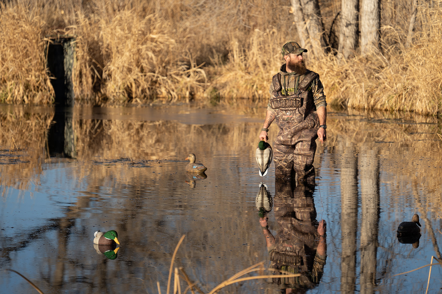 Waterfowl hunter with decoys