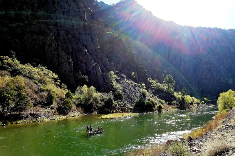 Biologists boat electrofishing on the Gunnison river.