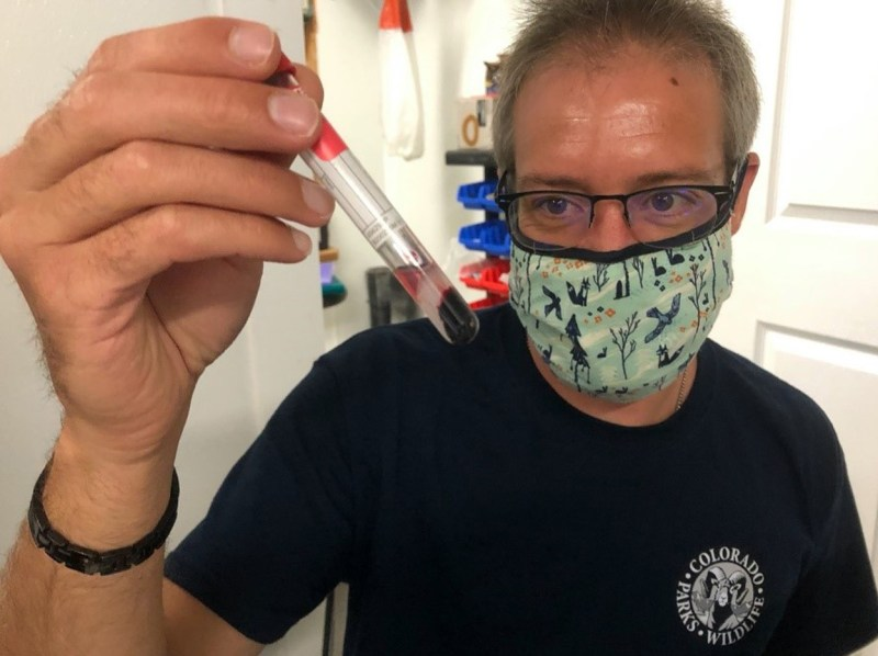 Dr. Eric Fetherman with blood serum collected from a cutthroat trout to test for antibodies produced in response to an infection by R. Salmoninarum