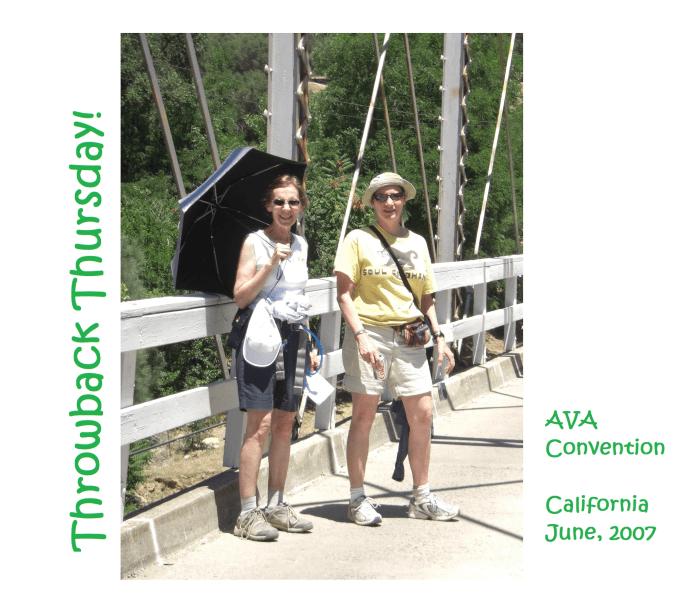 AVA Convention – California 2007