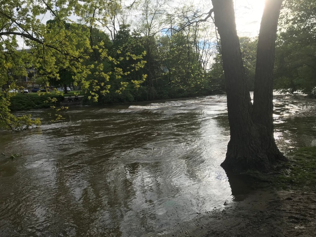Red Cedar River at MSU from bank
