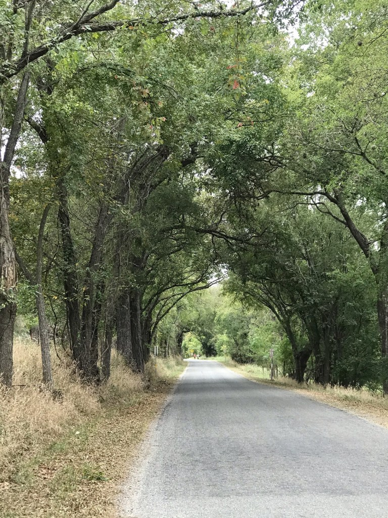 Waring_Oct2020_Road1