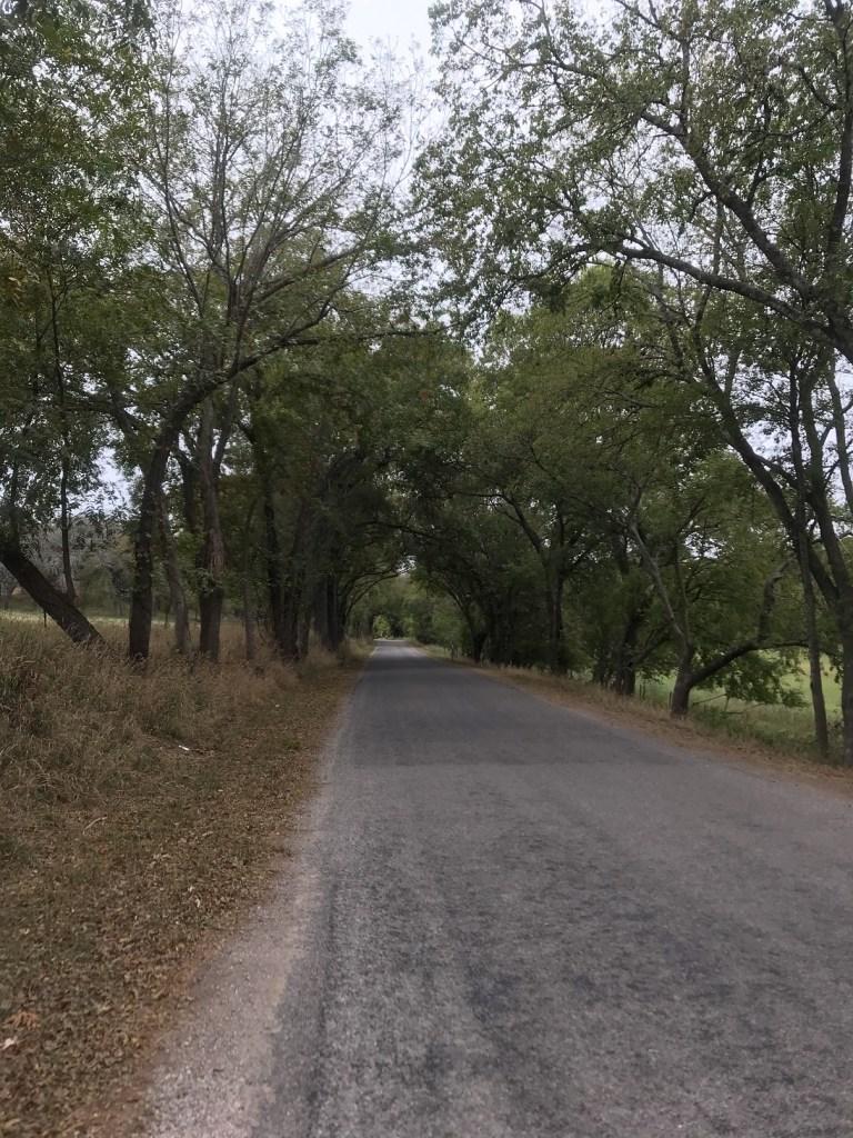 Waring_Oct2020_Road2