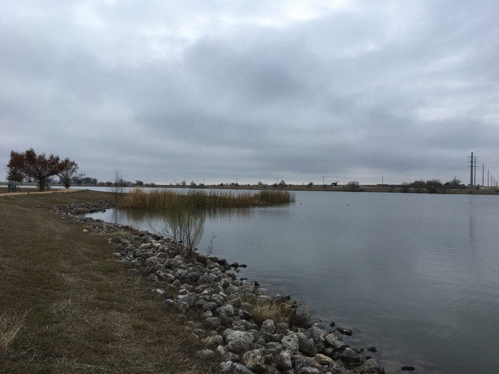 LakePflug_2021_Shoreline