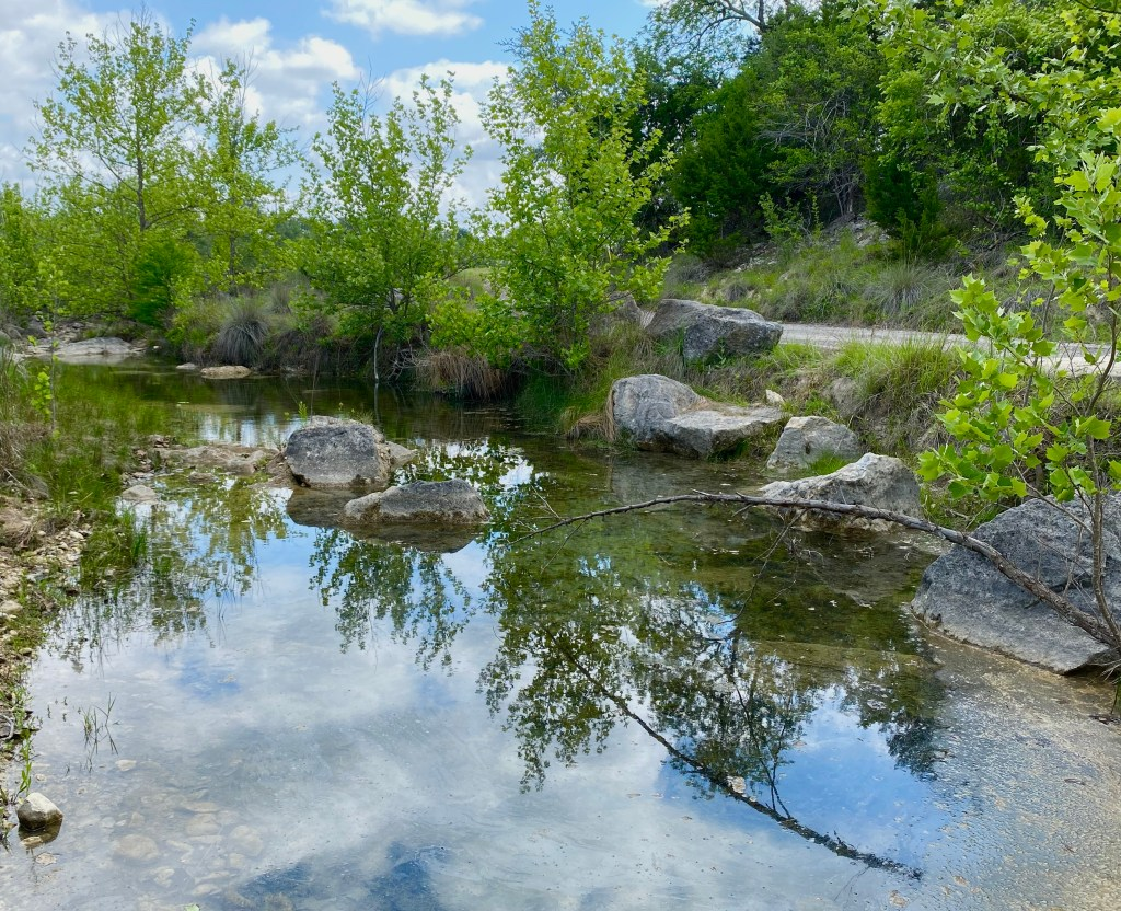 JoshuaSprings_2021_Deb_Creek
