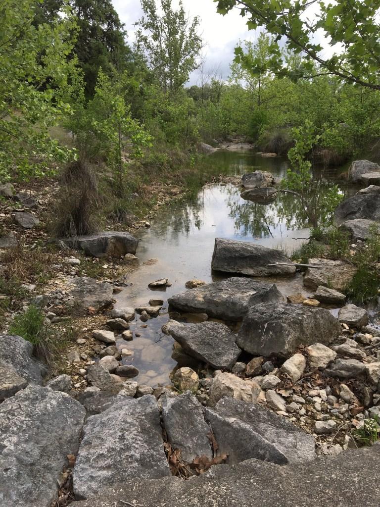 JoshuaSprings_2021_Steph_Creek