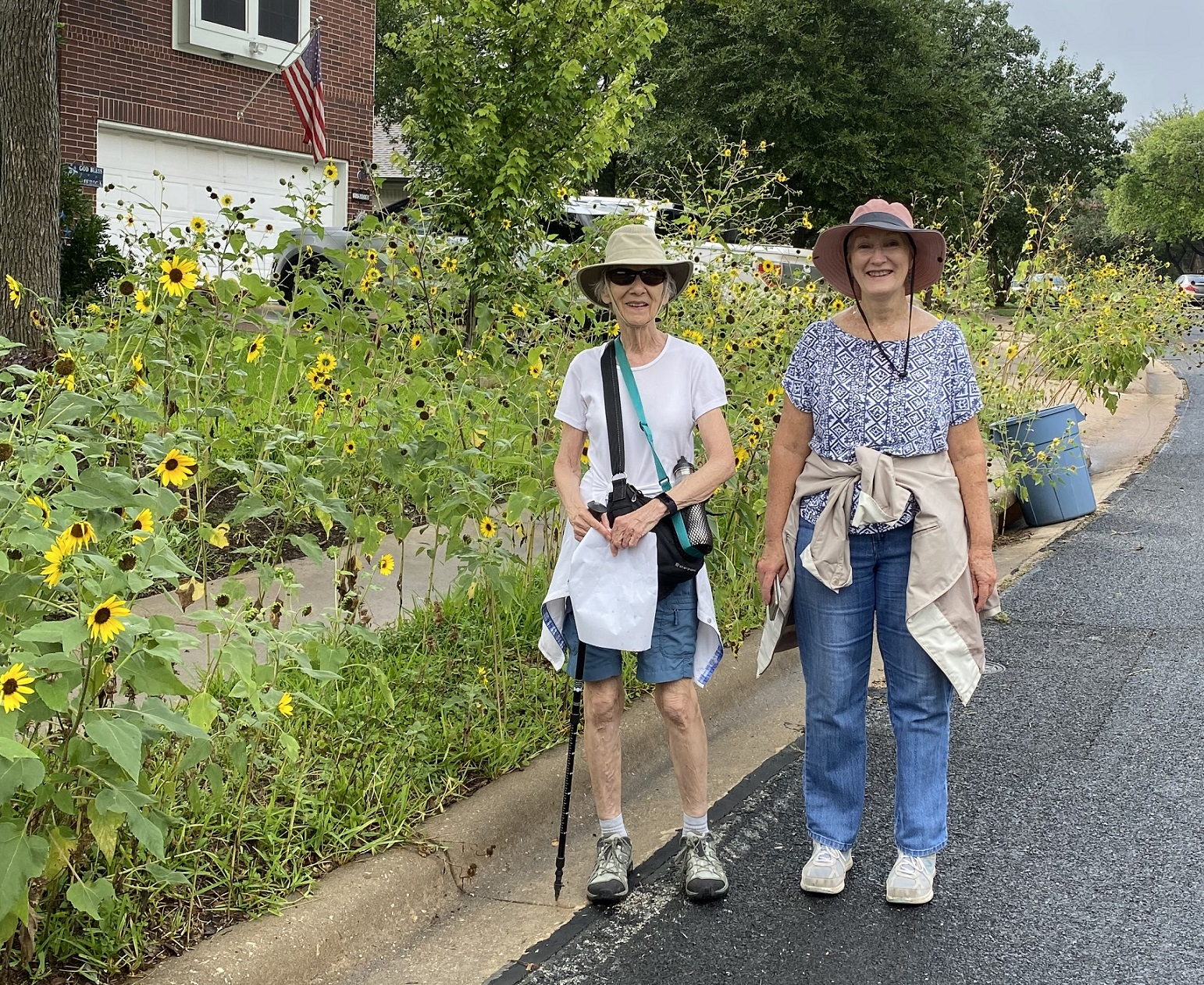 Photos from Violet Crown Exploratory Walk on July 10th