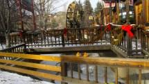 Christmas Colorado Traveling Ducks