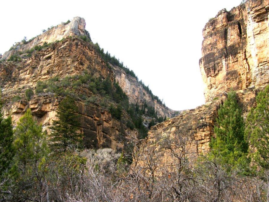 Main Elk Creek Canyon