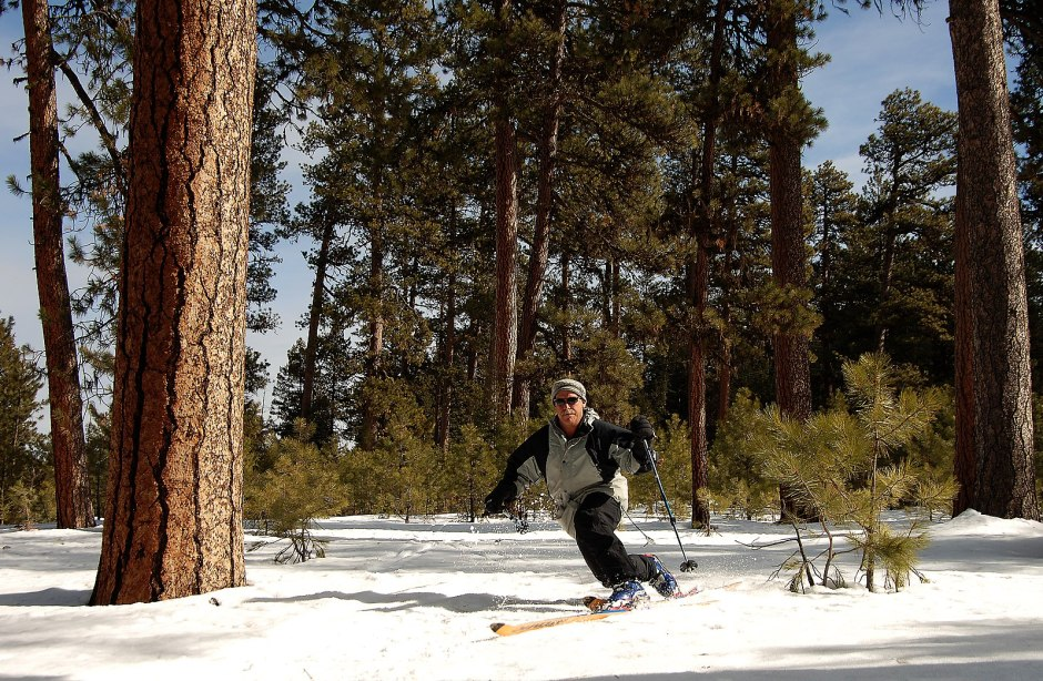 Telemark skier on safe, low-angle and mellow backcountry terrain