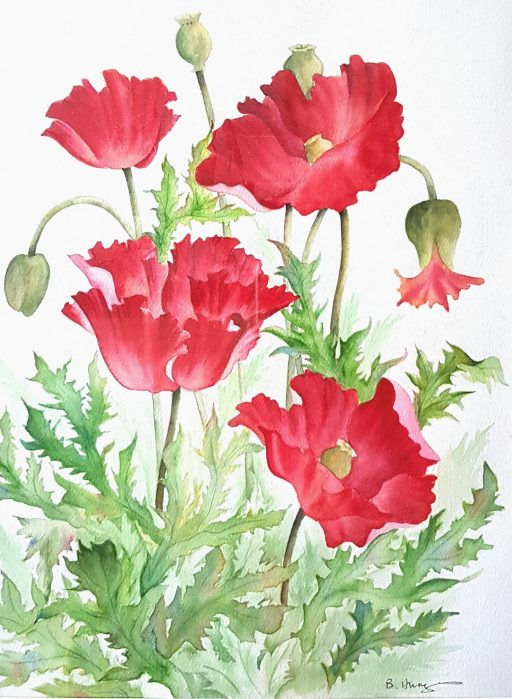 Remembrance Day Watercolor Poppies Greeting Card Color Art