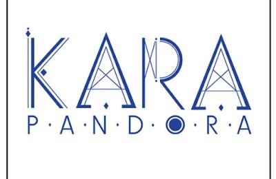 KARA (카라) – Idiot