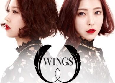 Wings (윙스) – Hair Short