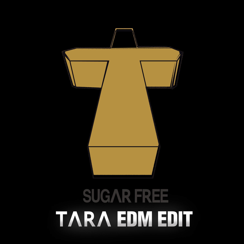 T-ARA - Sugar Free (Normal & BigRoom ver ) » Color Coded Lyrics