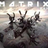 BAP-MATRIX