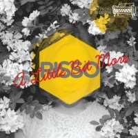 risso - a little bit more